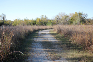 Osage Nature Trail 5 300